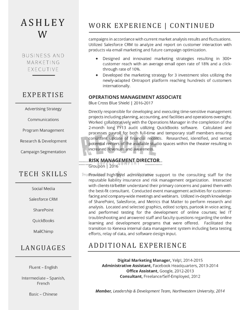 Marketing Executive Sample_Page 2